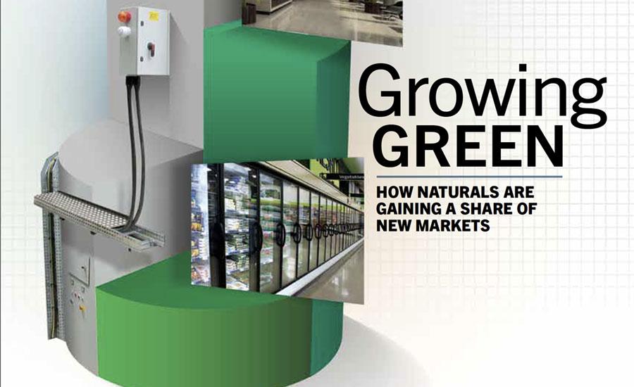 growing_green.jpg